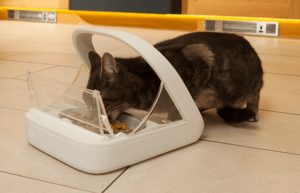 Cat Feeder With Collar Sensor